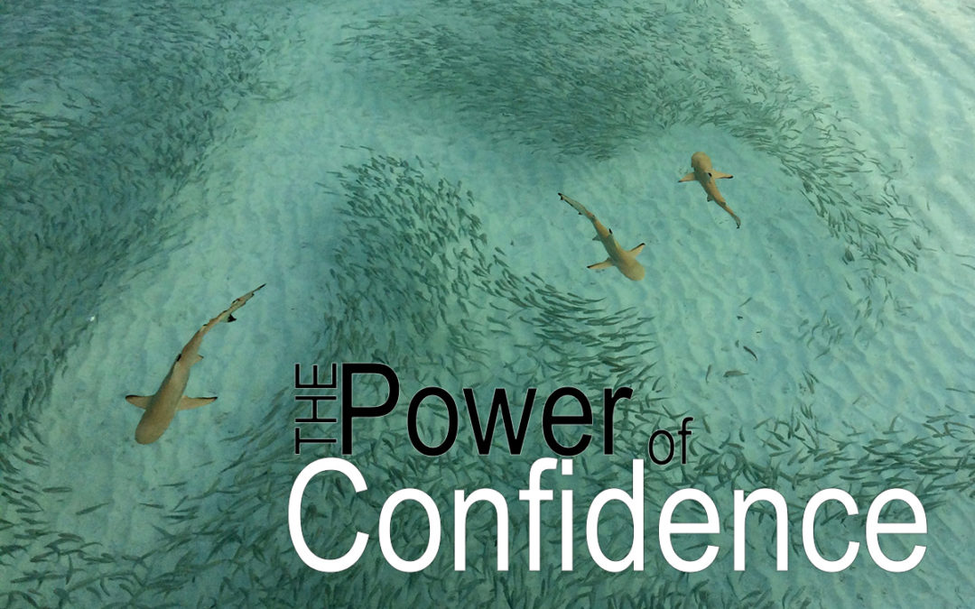 The Power of Confidence.
